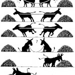 donkey_conflict_resolution