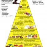 piramida_alimentara