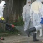 gripa aviara 150x150 Dosarul gripei aviare a ajuns în instanþã dupã 5 ani. Cum a fost prejudiciat statul cu 5,8 milioane de euro